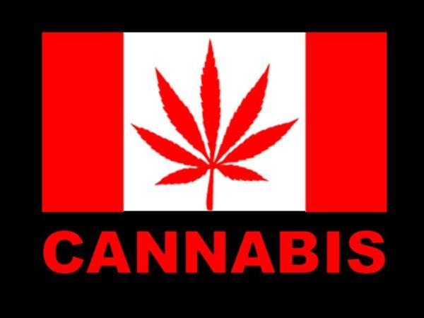 T-Shirt Noir Homme Drapeau Rouge et Blanc Canada Feuille de Cannabis