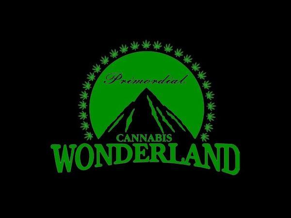 T-Shirt Noir Humour Cannabis Pays des Merveilles Coton Naturel Taille L